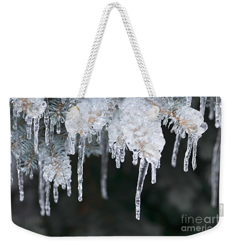 Ice Weekender Tote Bag featuring the photograph Winter Branches In Ice by Elena Elisseeva