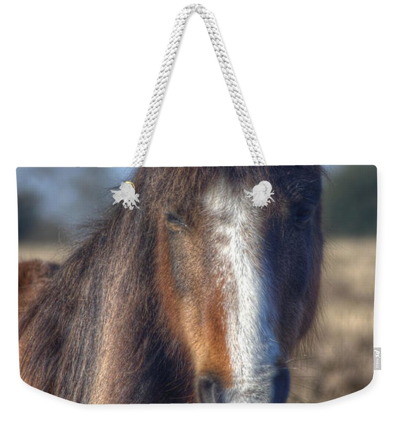 New Forest Pony Weekender Tote Bag featuring the photograph New Forest Pony by Chris Day