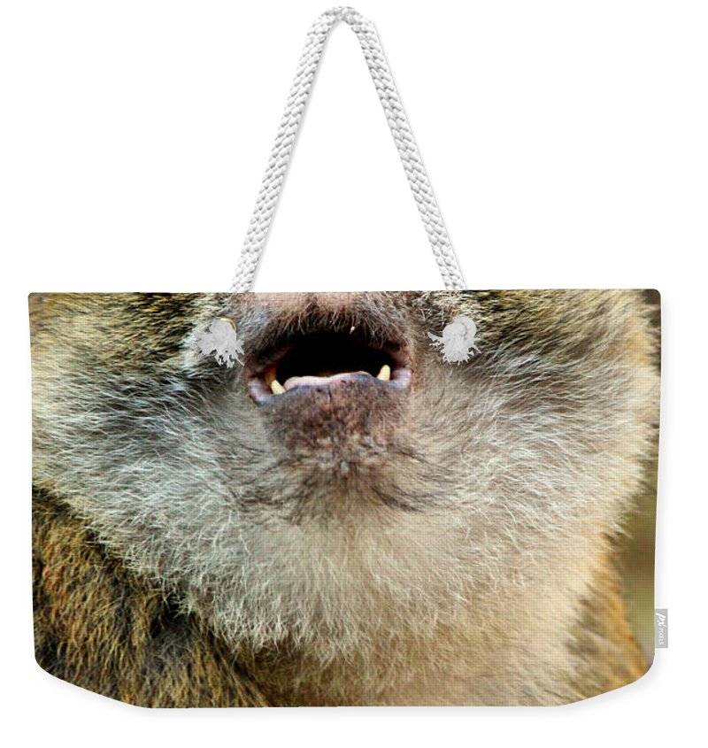Monkey Weekender Tote Bag featuring the photograph Monkey by Heike Hultsch