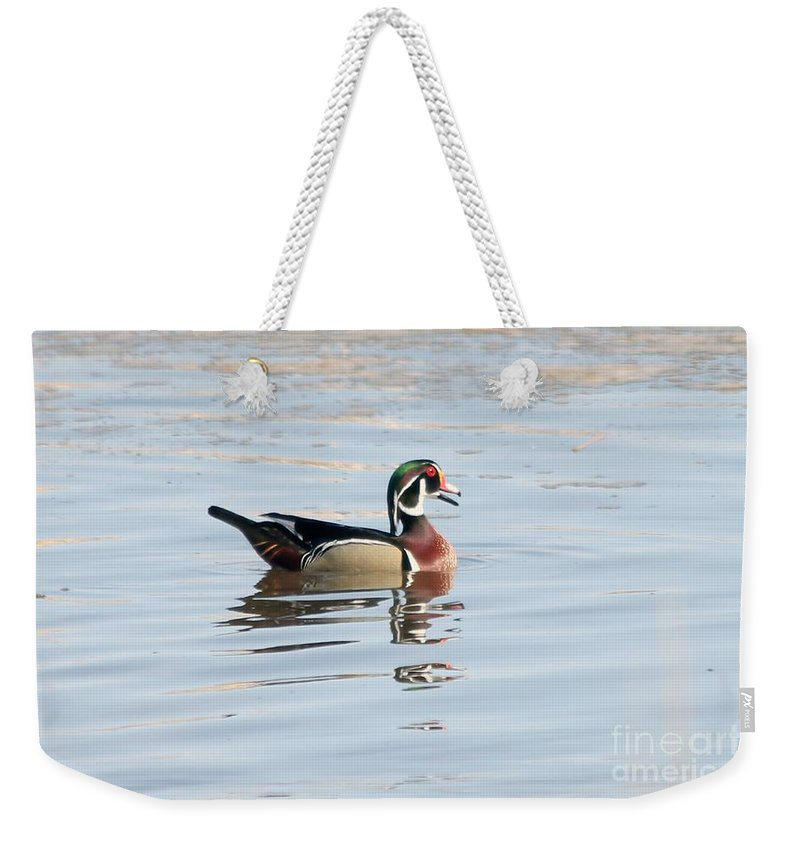 Wood Duck Weekender Tote Bag featuring the photograph Wood Duck by Lori Tordsen