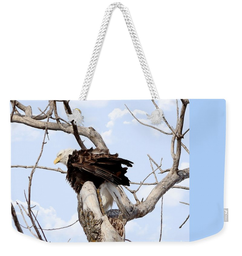 Merlin Weekender Tote Bag featuring the photograph Bald Eagle by Lori Tordsen