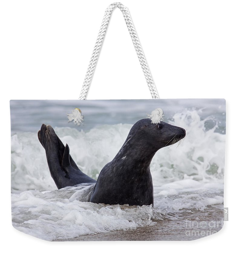 Atlantic Weekender Tote Bag featuring the photograph 130201p124 by Arterra Picture Library