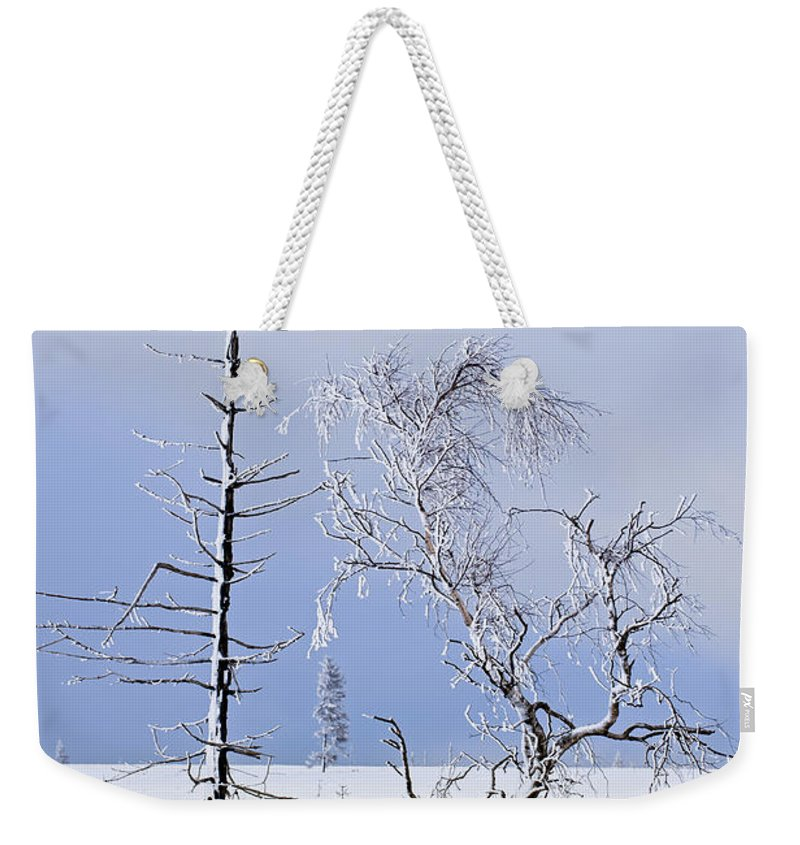 High Fens Weekender Tote Bag featuring the photograph 130201p331 by Arterra Picture Library