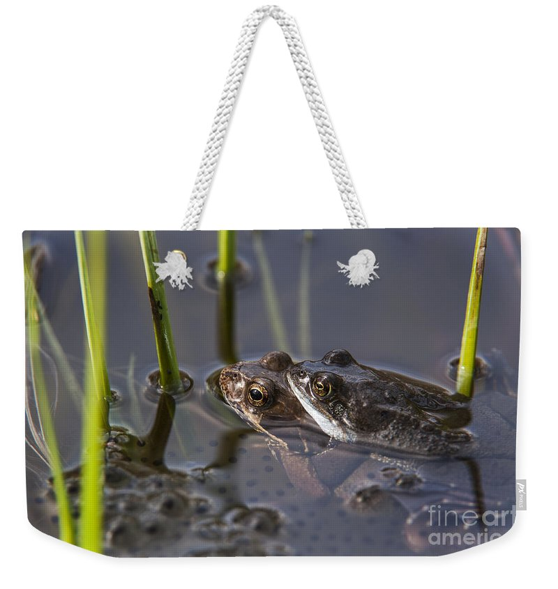 Frogspawn Weekender Tote Bag featuring the photograph 130318p140 by Arterra Picture Library