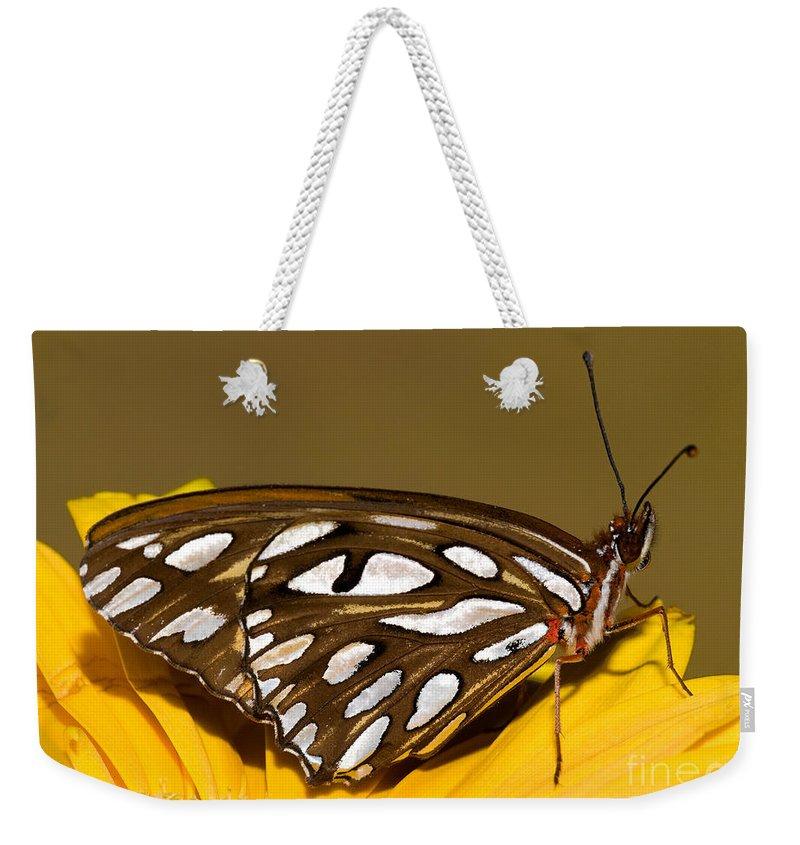 Gulf Fritillary Butterfly Weekender Tote Bag featuring the photograph Gulf Fritillary Butterfly by Millard H. Sharp