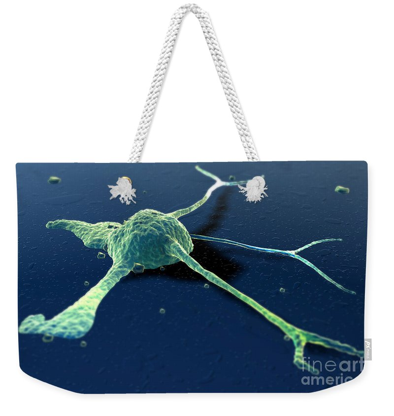 Digitally Generated Image Weekender Tote Bag featuring the photograph Cancer Cell by Science Picture Co