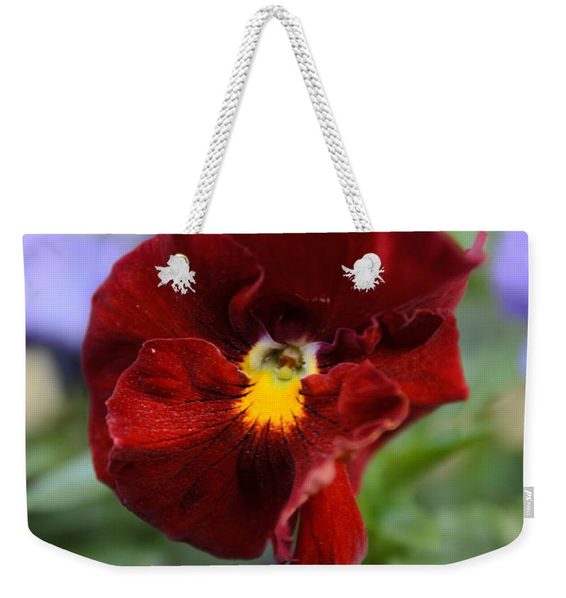 Art Weekender Tote Bag featuring the photograph Viola Tricolor Heartsease by Michael Goyberg