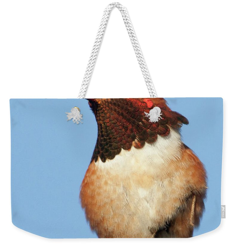 Nature Weekender Tote Bag featuring the photograph Birds Of The World by Hal Beral - Vwpics
