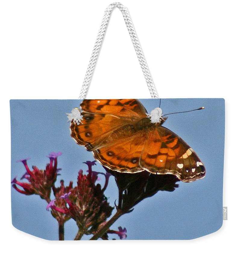 American Lady Weekender Tote Bag featuring the photograph American Lady Butterfly by Karen Adams