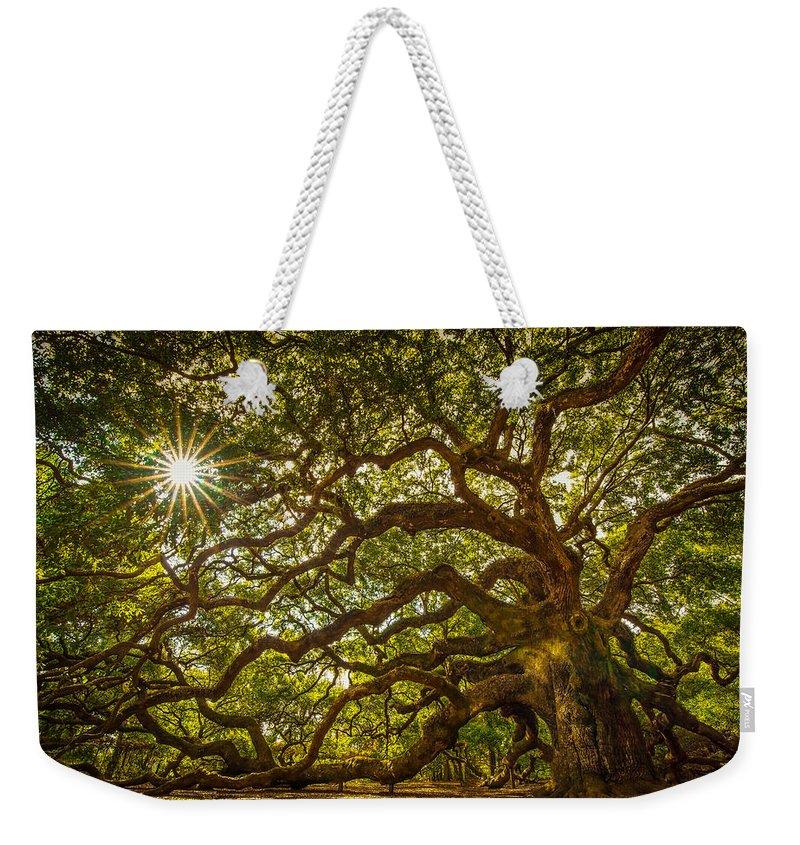 Oak Weekender Tote Bag featuring the photograph Angel Oak by Serge Skiba