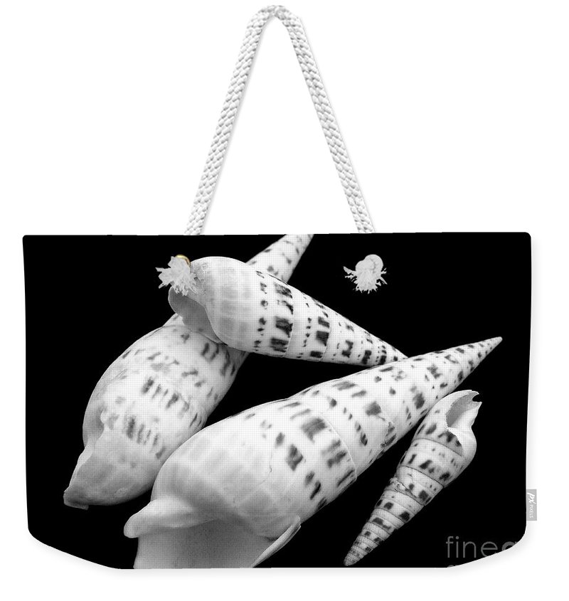 Sea Shell Weekender Tote Bag featuring the photograph Augers by Mary Deal
