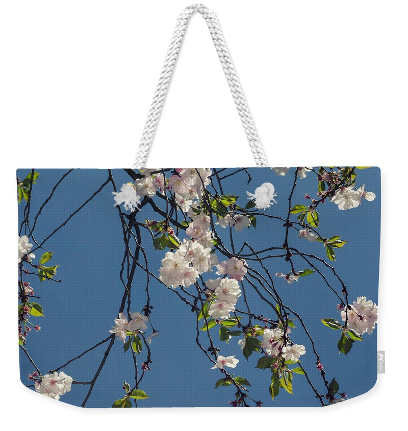 Spring Weekender Tote Bag featuring the photograph Blooming Trees by TouTouke A Y