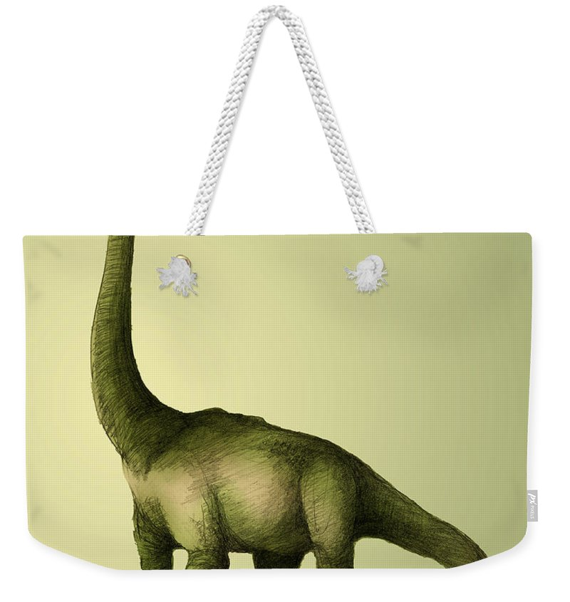 Animal Weekender Tote Bag featuring the photograph Brachiosaurus by Spencer Sutton