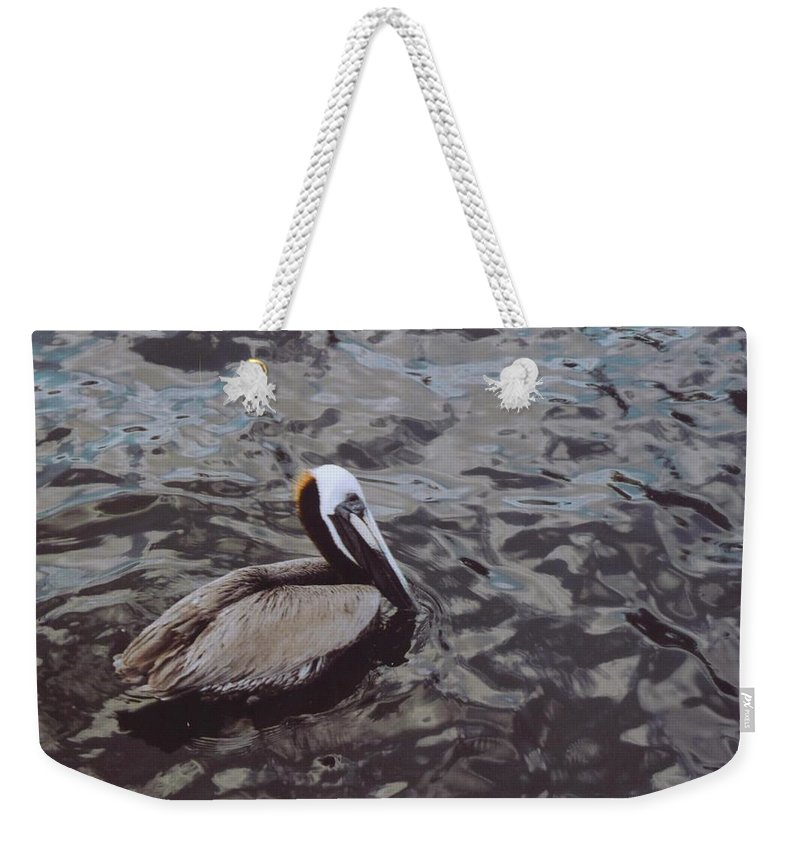 Matlacha Weekender Tote Bag featuring the photograph Brown Pelican by Robert Floyd