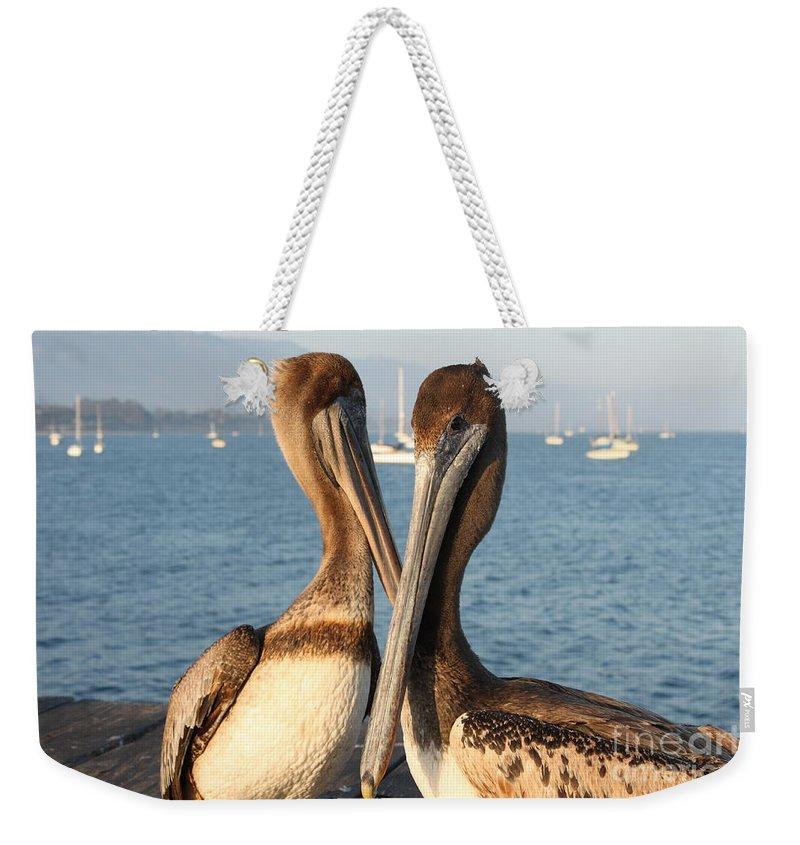 Santa Barbara Weekender Tote Bag featuring the photograph California Pelicans by Henrik Lehnerer