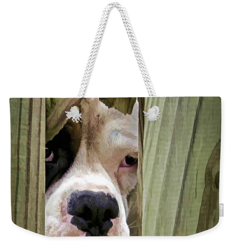 Animal Weekender Tote Bag featuring the photograph Can I Come Over And Play by Marcia Colelli