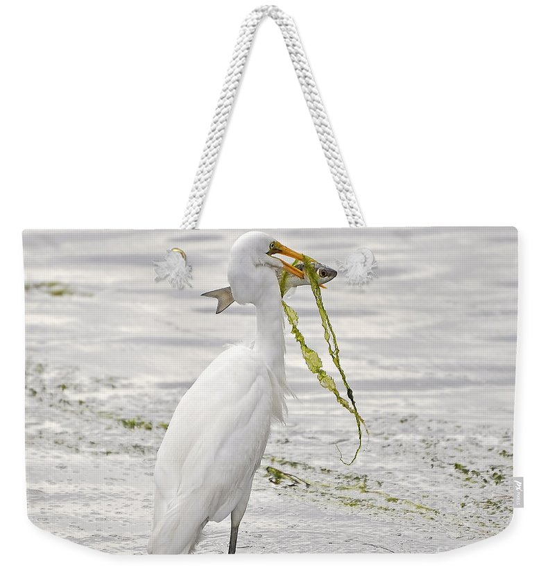 Egret Weekender Tote Bag featuring the photograph Colossal Catch by Al Powell Photography USA