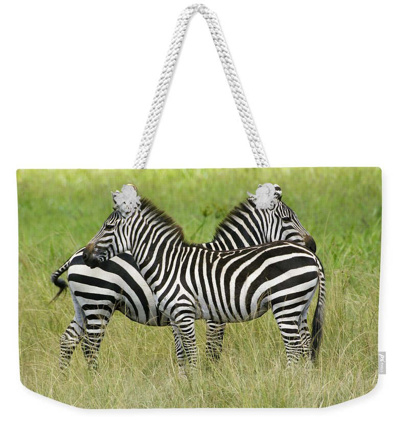 Africa Weekender Tote Bag featuring the photograph Crisscross Stripes by Michele Burgess