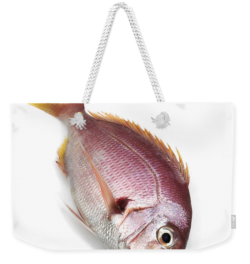 Animal Weekender Tote Bag featuring the photograph Daurade Rose by Gerard Lacz
