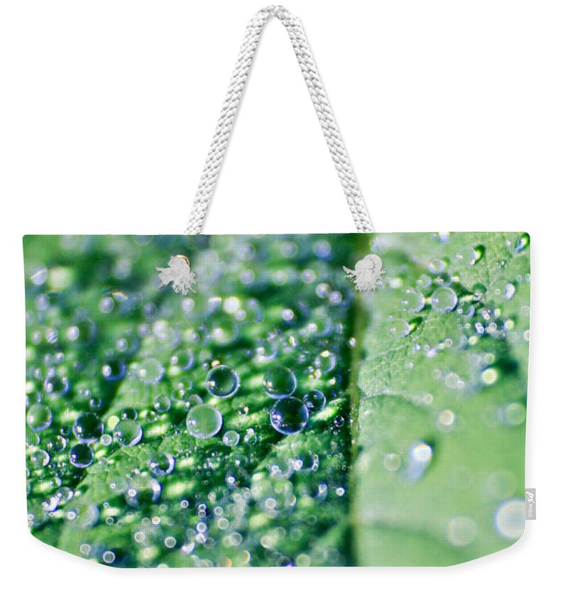 Background Weekender Tote Bag featuring the photograph dew by Dan Radi