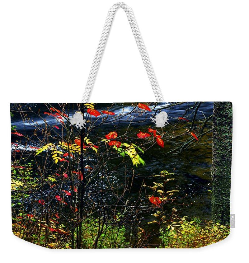 Autumn Weekender Tote Bag featuring the photograph Fall Forest And River by Elena Elisseeva