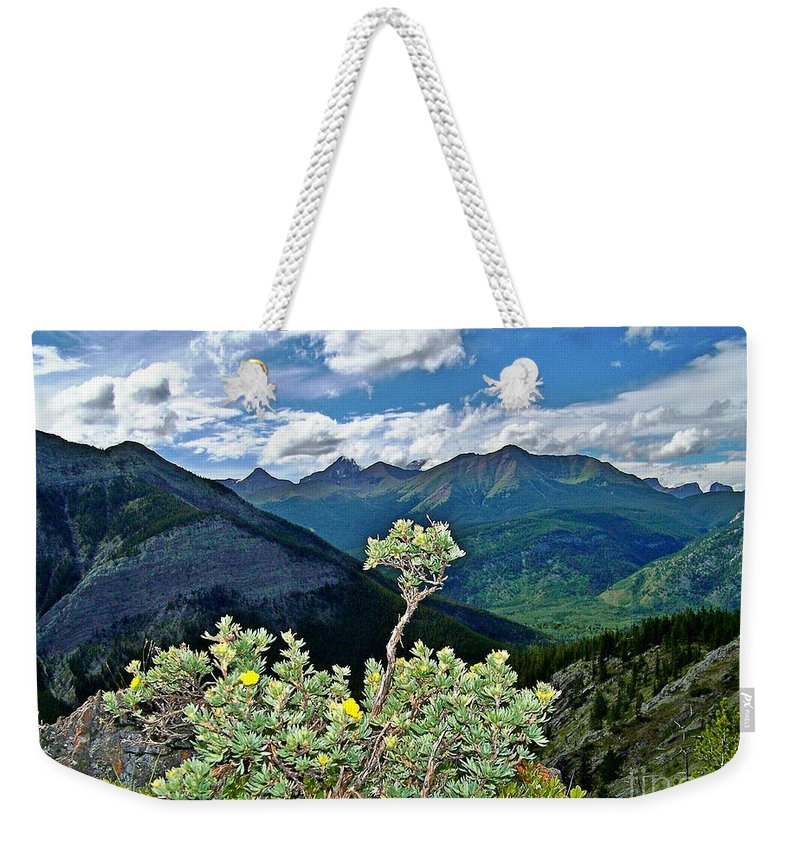 Extreme Mountain Weather Weekender Tote Bag featuring the photograph Hardy Shrub by Greg Hammond