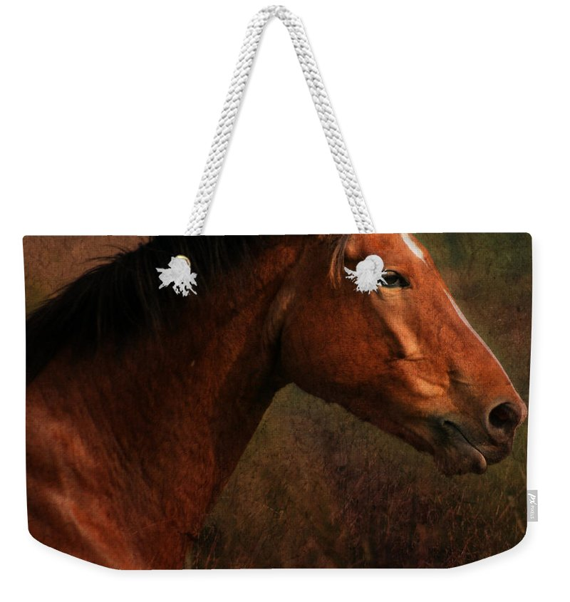 Horse Weekender Tote Bag featuring the photograph Horse Portrait by Angel Ciesniarska