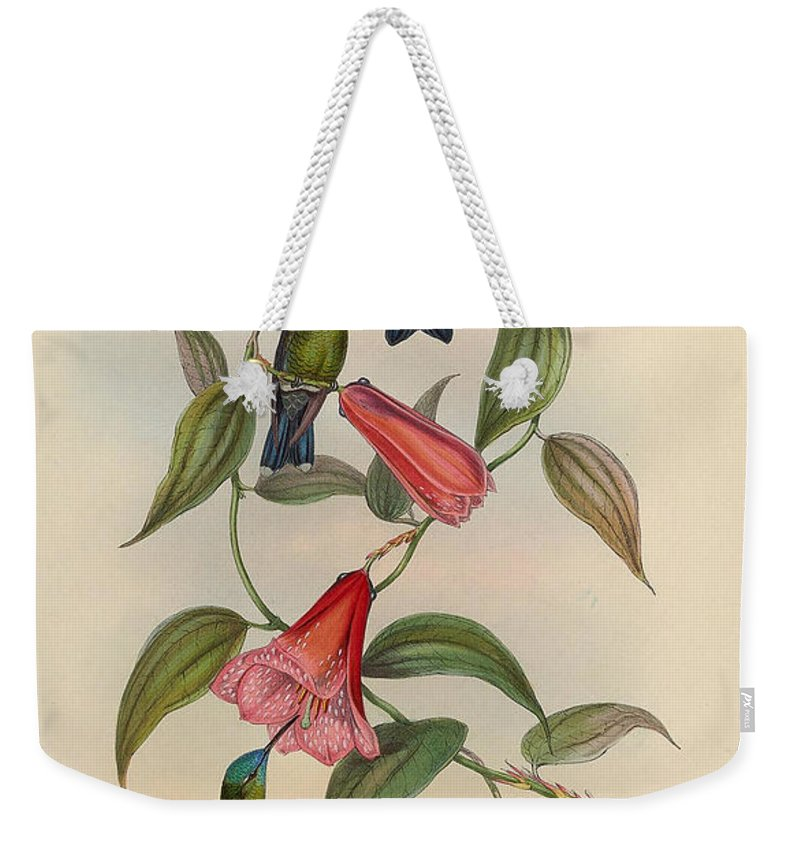 Hummingbirds Weekender Tote Bag featuring the painting Hummingbirds by Philip Ralley