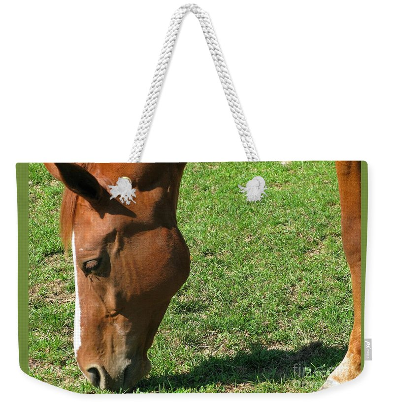 Horse Weekender Tote Bag featuring the photograph In Green Pasture by Ann Horn