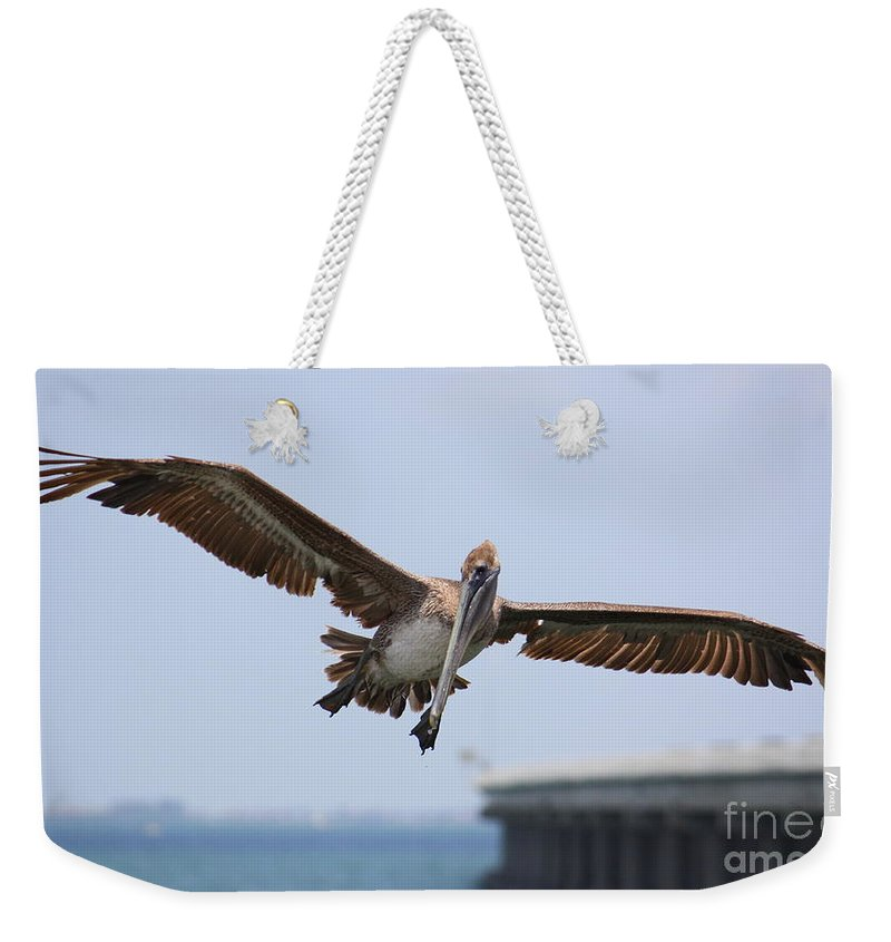 Pelican Weekender Tote Bag featuring the photograph Incoming Pelican by Carol Groenen