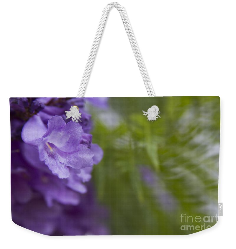 Weekender Tote Bag featuring the photograph Jacaranda Mimosifolia Makawao Maui Hawaii by Sharon Mau