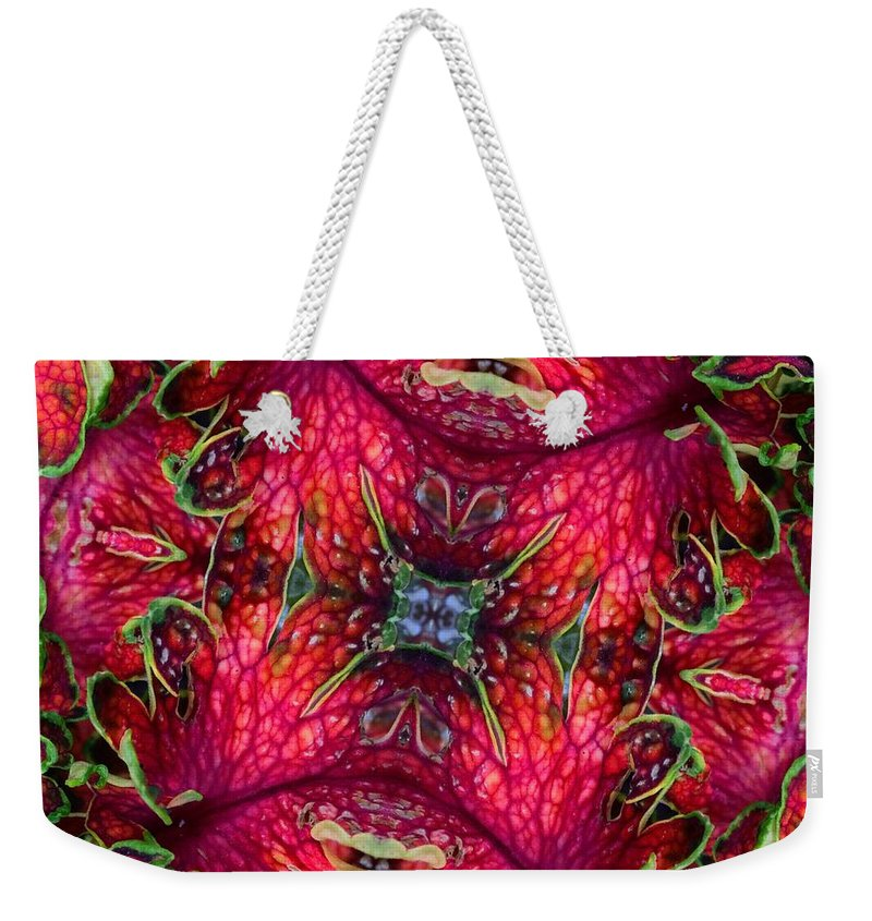 Coleus Weekender Tote Bag featuring the photograph Kaleidoscope Made From An Image Of A Coleus Plant by Amy Cicconi