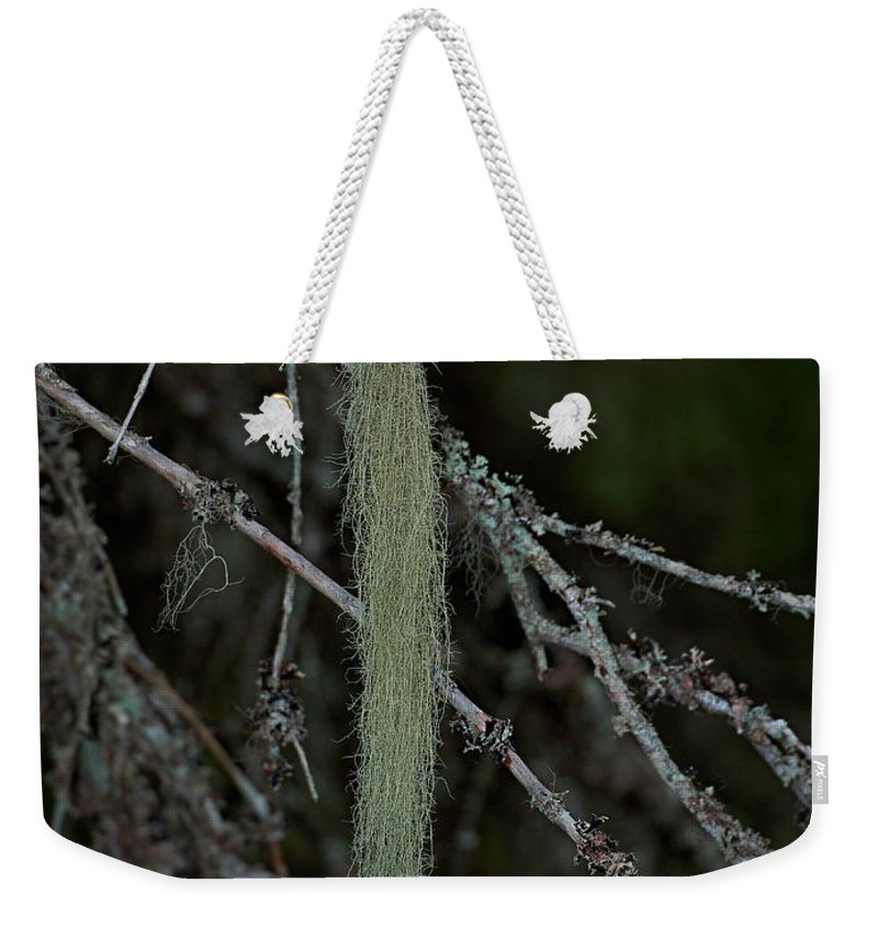 Finland Weekender Tote Bag featuring the photograph Lichen by Jouko Lehto