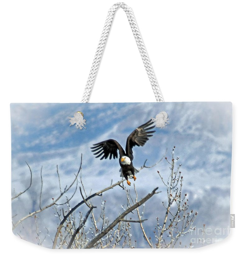 Colorado Weekender Tote Bag featuring the photograph Lift Off by Bob Hislop