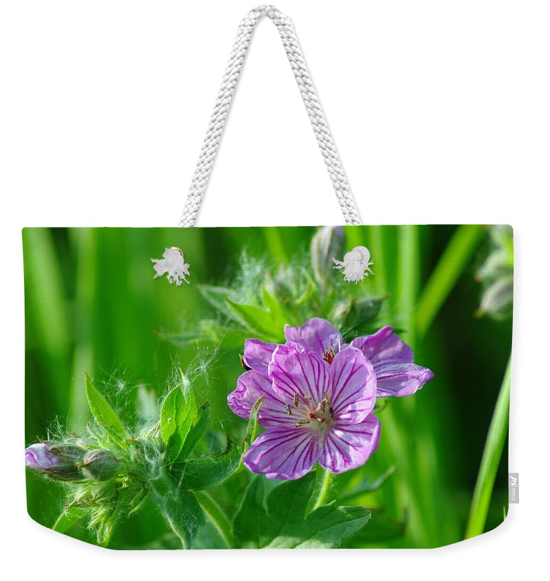 Blue Weekender Tote Bag featuring the photograph Little Blue Flowers by Jeff Swan