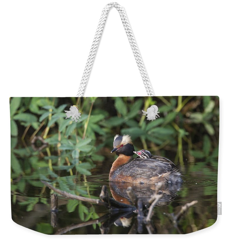 Doug Lloyd Weekender Tote Bag featuring the photograph Mom And Me by Doug Lloyd