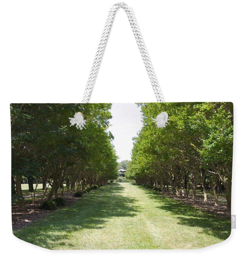 Favorite Spot In The Gardens Weekender Tote Bag featuring the painting Norfolk Botanical Garden 2 by Jeelan Clark
