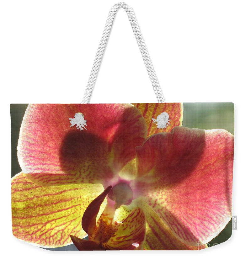 Orchid Weekender Tote Bag featuring the photograph Orchid by Christiane Schulze Art And Photography
