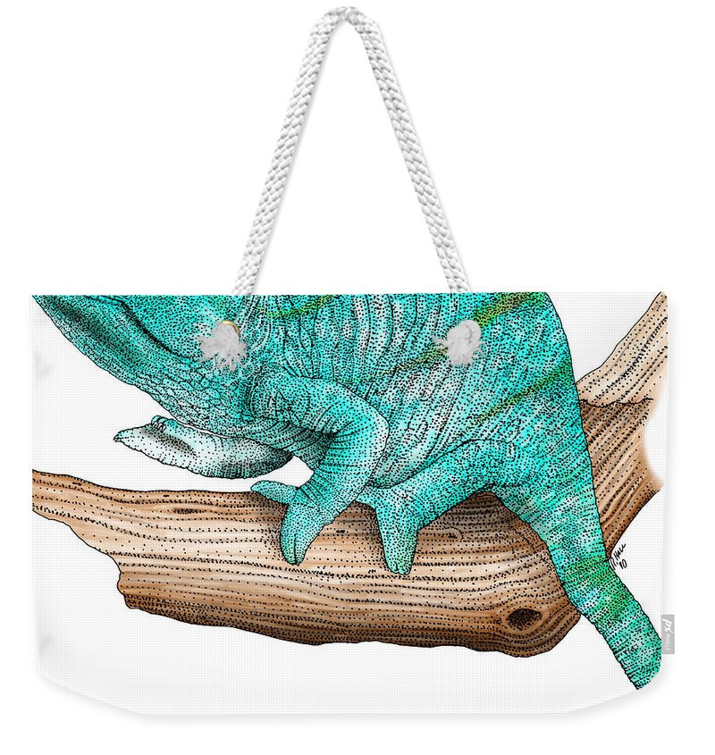 Lizard Weekender Tote Bag featuring the photograph Parsons Chameleon by Roger Hall