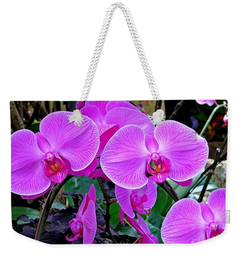 Orchid Weekender Tote Bag featuring the photograph Pink Orchid by Lena Photo Art