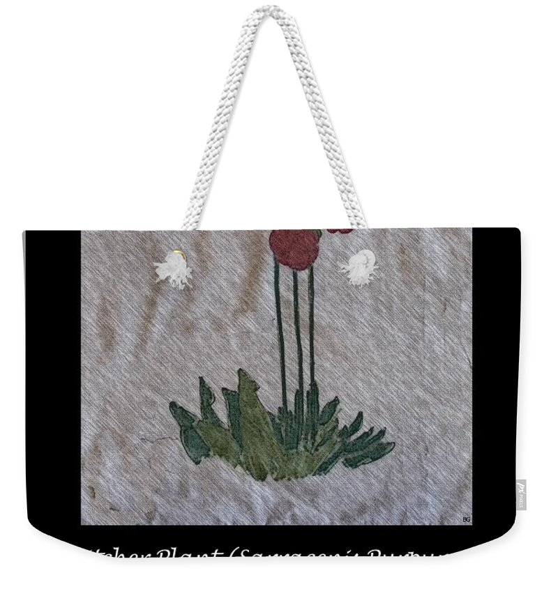 Pitcher Plant Weekender Tote Bag featuring the photograph Pitcher Plant by Barbara Griffin