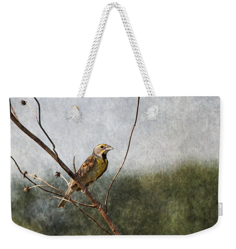 Dickcissel Weekender Tote Bag featuring the photograph Poised by Dale Kincaid