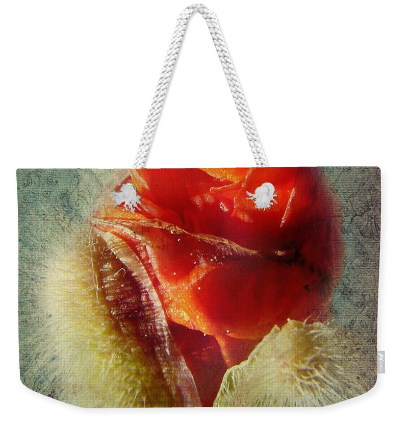 Colorful Flowers Weekender Tote Bag featuring the photograph Poppy by Heike Hultsch