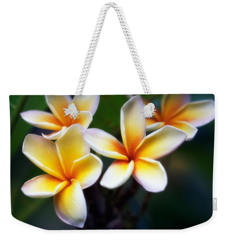 Floral Weekender Tote Bag featuring the photograph Pua Melia by Jade Moon