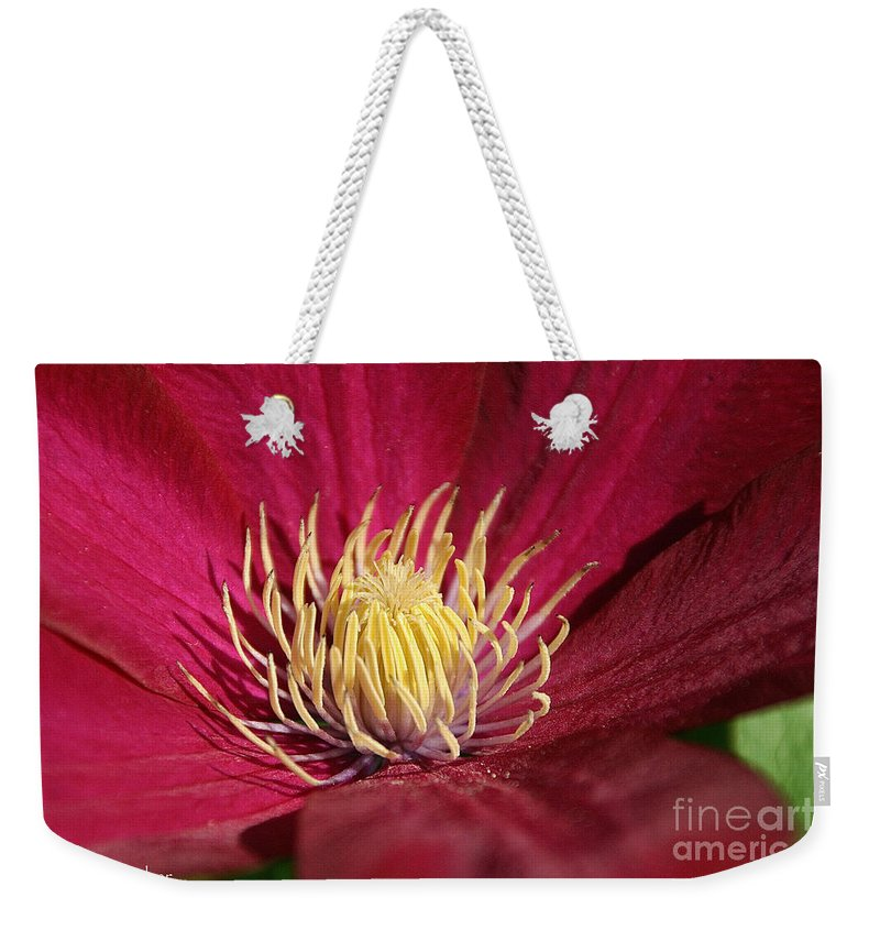 Flower Weekender Tote Bag featuring the photograph Yellow Fingers by Susan Herber