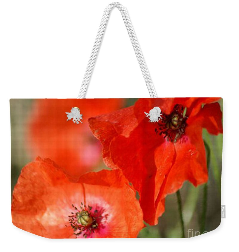 Poppies Weekender Tote Bag featuring the photograph Red Poppies by Carol Lynch