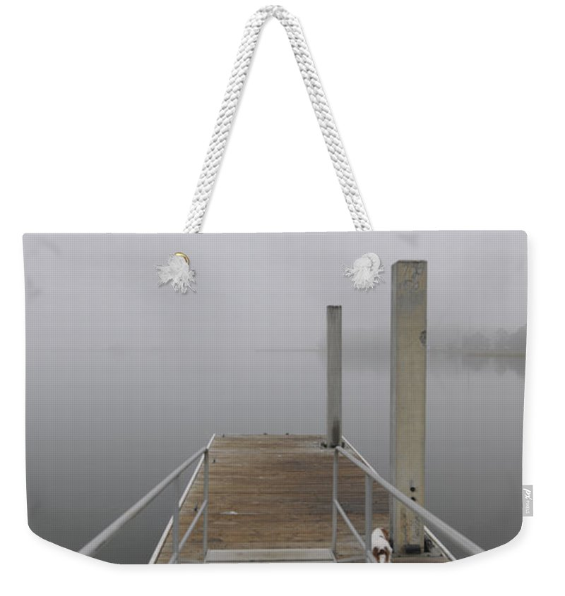 Fog Weekender Tote Bag featuring the photograph Sea Dog by Dale Powell