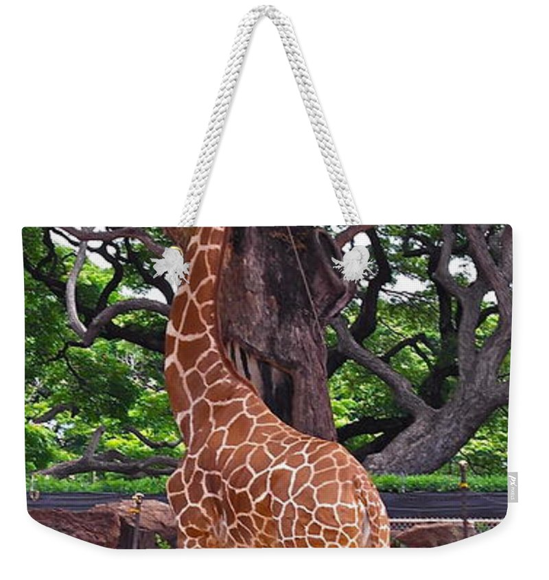 Giraffe Weekender Tote Bag featuring the photograph Stretching It by Michele Myers