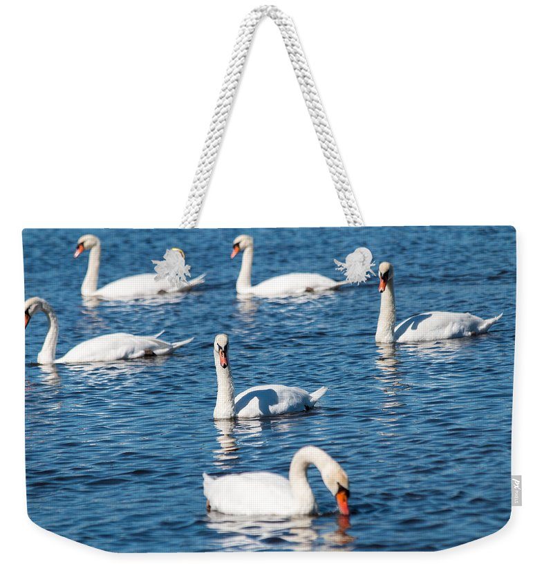 Beautiful Weekender Tote Bag featuring the photograph Swan by Gaurav Singh