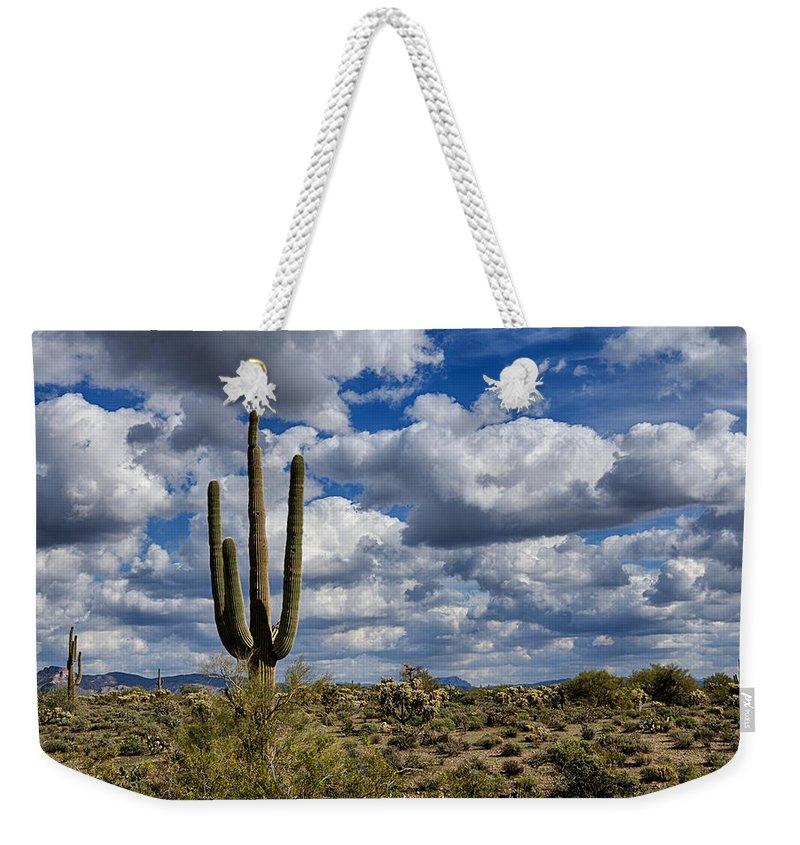 Arizona Weekender Tote Bag featuring the photograph The Beauty Of The Desert Southwest by Saija Lehtonen
